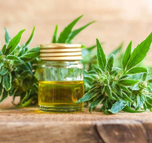 What Is Hemp Derived Cbd